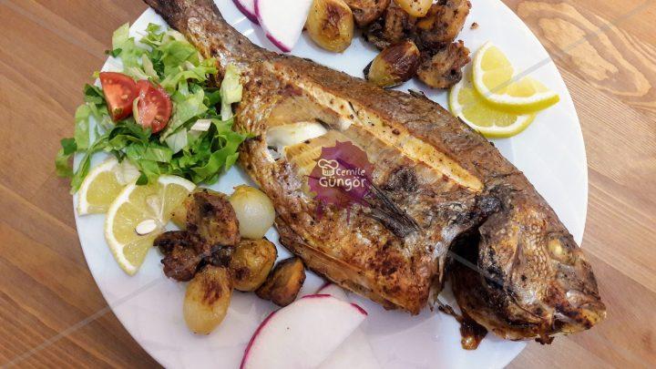 Izgara Kıvamında Kokusuz Fırında Balık Tarifi